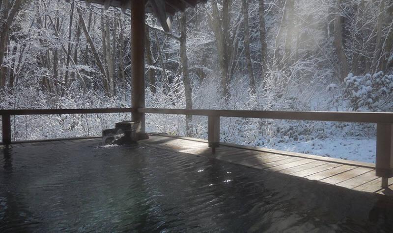 【葛温泉 温宿かじか】 『単純温泉』の深さに気付かされた信州の秘湯