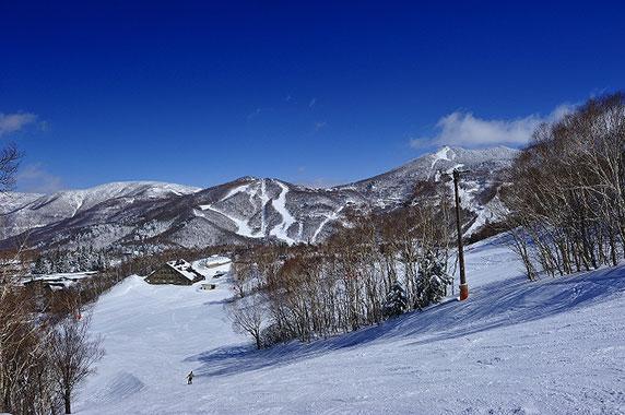 志賀高原中央エリア 蓮池スキー場